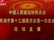 中国人民政治协商会议芜湖市第十三届委员会第一次会议