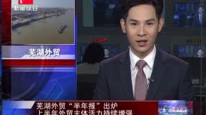 """芜湖外贸""""半年报""""出炉 上半年外贸主体活力持续增强"""