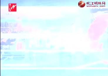 20170615《芜湖新闻》