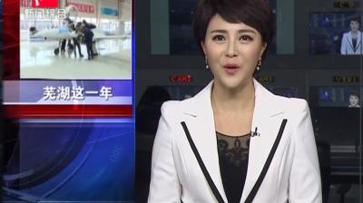 芜湖这一年(二)战略性新兴产业全力出击