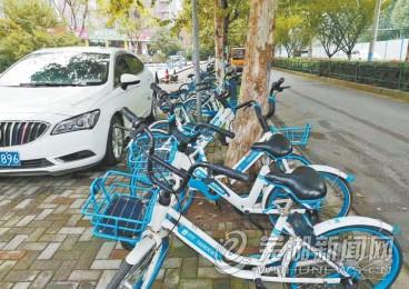 我市7月清理調度約30余萬輛共享單車