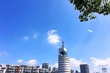 芜湖传媒集团(南北区办公区域)灭鼠、灭白蚁服务单位公开招标公告