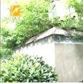 港一路:小矮屋 变压器 为何多年被搁置?