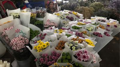 云南昆明花卉市场,玫瑰白菜价,一束玫瑰只要几元
