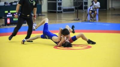 摔跤吧,少年!2017安徽省青少年摔跤大赛,芜湖县一中体育馆开赛!