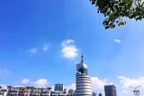 芜湖市广播电视台中心院内三个中庭绿化美化项目公开招标公告