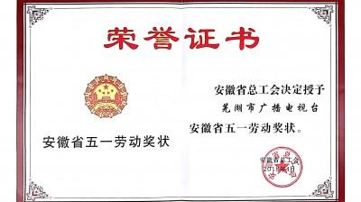 """劳动最光荣 劳动最崇高—我台荣获""""省五一劳动奖状"""""""