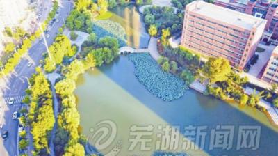 2020年芜湖将300米见绿500米见园