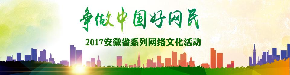 2017中国好网民