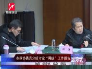 """市政协委员分组讨论""""两院""""工作报告"""
