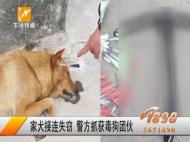 家犬接连失窃 警方抓获毒狗团伙