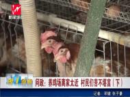 养鸡场离家太近 村民们苦不堪言