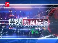 芜湖新闻2019-01-18