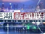 芜湖新闻联播-2020-08-28