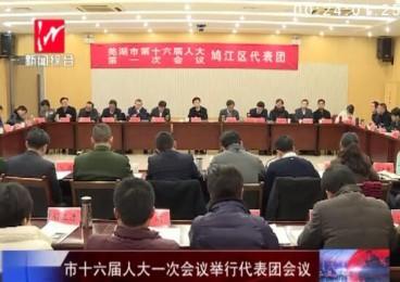 市十六届人大一次会议举行代表团会议