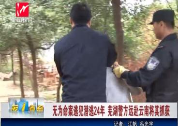 无为命案逃犯潜逃24年 芜湖警方远赴云南将其抓获