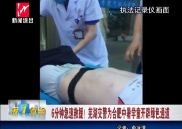 芜湖交警为合肥中暑学童开辟绿色通道