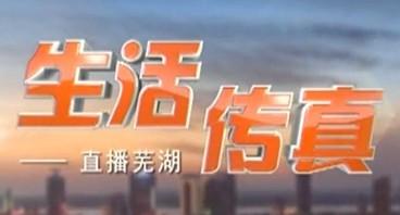 生活传真-2019-09-11