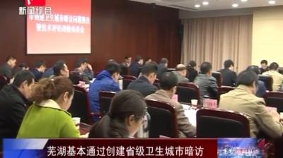 芜湖基本通过创建省级卫生城市暗访