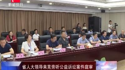 省人大领导来芜旁听公益诉讼案件庭审