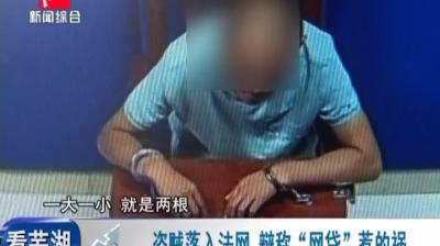 """盗贼落入法网 辩称""""网贷""""惹的祸"""