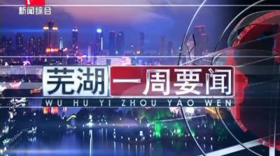 芜湖新闻2019-01-06