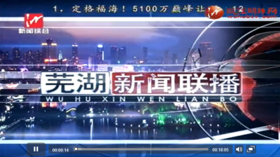 芜湖新闻联播2019-1-10