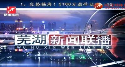 芜湖新闻2019-04-28