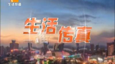 生活传真-2019-11-14