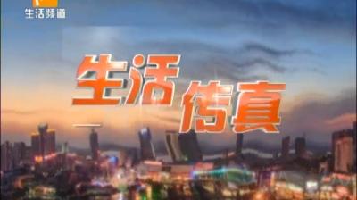 生活传真-2020-08-03