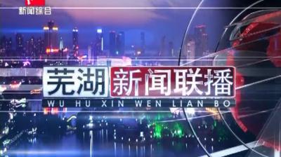 芜湖新闻联播-2020-08-10